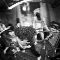 Photo de Hyacinth