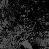 Pochette Split avec Unearthly Trance