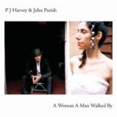 Pochette A Woman a Man Walked By