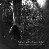 Pochette Asleep In The Downlights