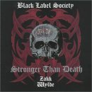 Pochette de Stronger Than Death