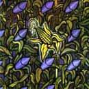 Pochette de Against The Grain