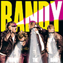 Pochette de Randy The Band