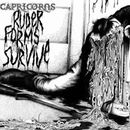 Pochette de Ruder Forms Survive