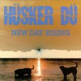 Pochette New Day Rising