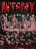 Pochette Born Undead