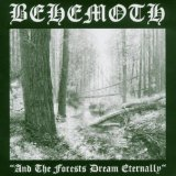 Pochette And The Forests Dream Eternally