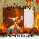Pochette The Forest Is My Throne / Yggdrasill (split avec Enslaved)