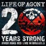 Pochette 20 Years Strong - River Runs Red: Live In Brussels
