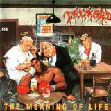 Pochette The Meaning Of Life