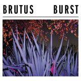 Pochette de Burst