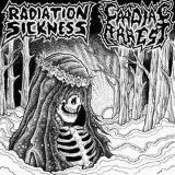 Pochette Split avec Radiation Sickness