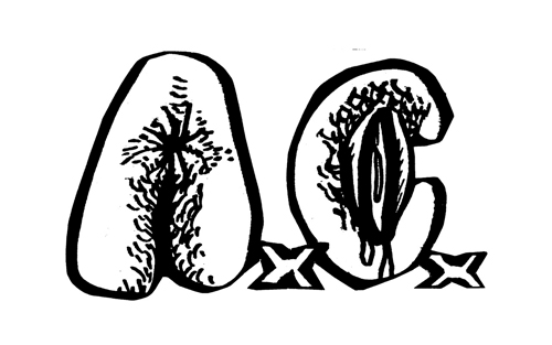 logo Anal Cunt