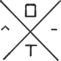 logo Oiseaux-Tempête
