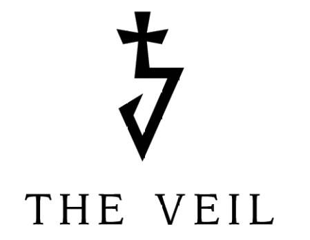 logo The Veil