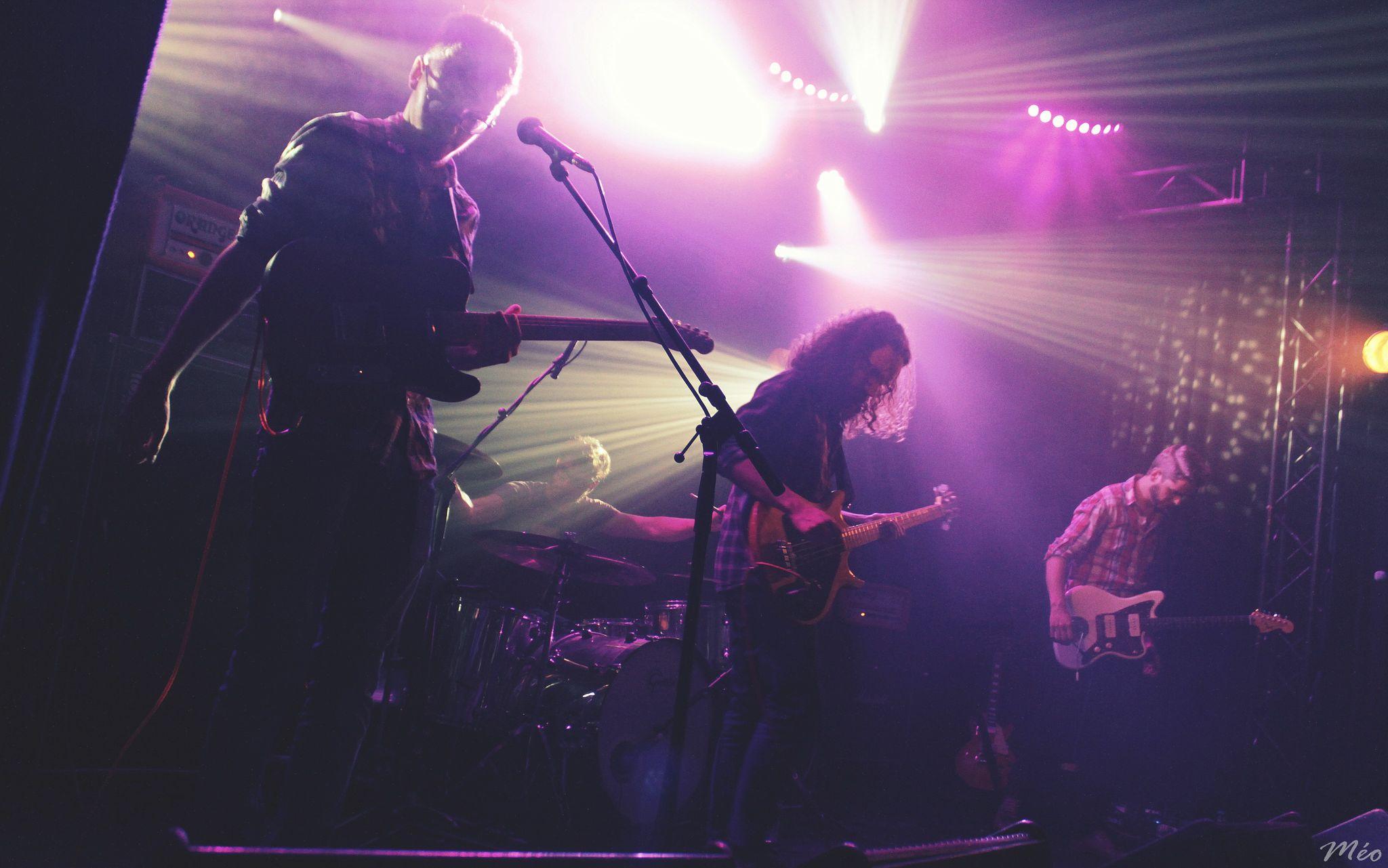 Stoned Harpies