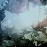 Elestial / Opal (split avec Sleeping Peonies)