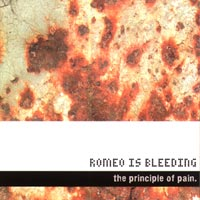 The Principle of Pain