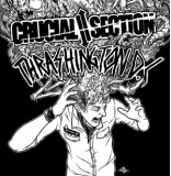 Split w/ Crucial Section