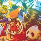 Pochette Split avec Pneu, Papier Tigre, Electric Electric par Marvin