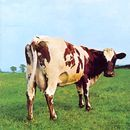 Pochette Atom Heart Mother par Pink Floyd