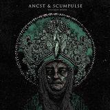 Split avec Scumpulse
