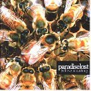 Pochette Believe In Nothing par Paradise Lost