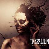 Pochette Voodoo Moonshine EP par Trepalium