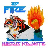 Pochette By Fire