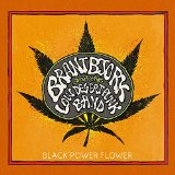 Pochette Black Power Flower