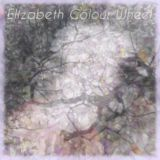 Elizabeth Colour Wheel