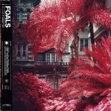 Pochette Everything Not Saved Will Be Lost Part 1 par Foals