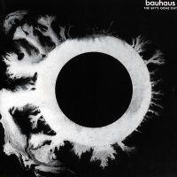 Pochette The Sky's Gone Out par Bauhaus