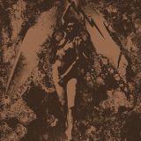Split avec Napalm Death
