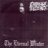 Pochette The Eternal Winter