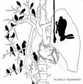 Talons // Noumenon