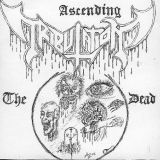Pochette The Ascending Dead