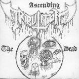 The Ascending Dead