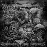 Split avec Mortal Decay