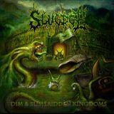 Dim & Slimeridden Kingdoms