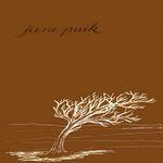 June Paik