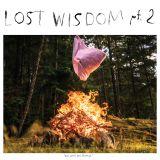 Pochette Lost Wisdom Pt.2