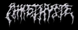 logo Amethyste