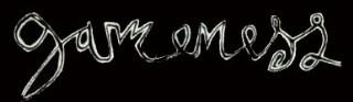 logo Gameness