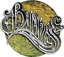 logo Baroness