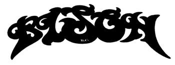 logo Bison B.C.
