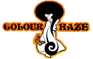 logo Colour Haze