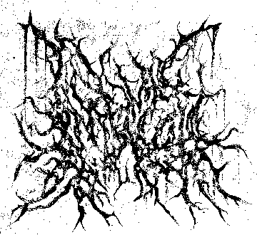 logo Infernal Coil