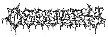 logo Ossuary