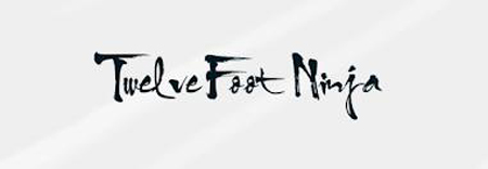 logo Twelve Foot Ninja
